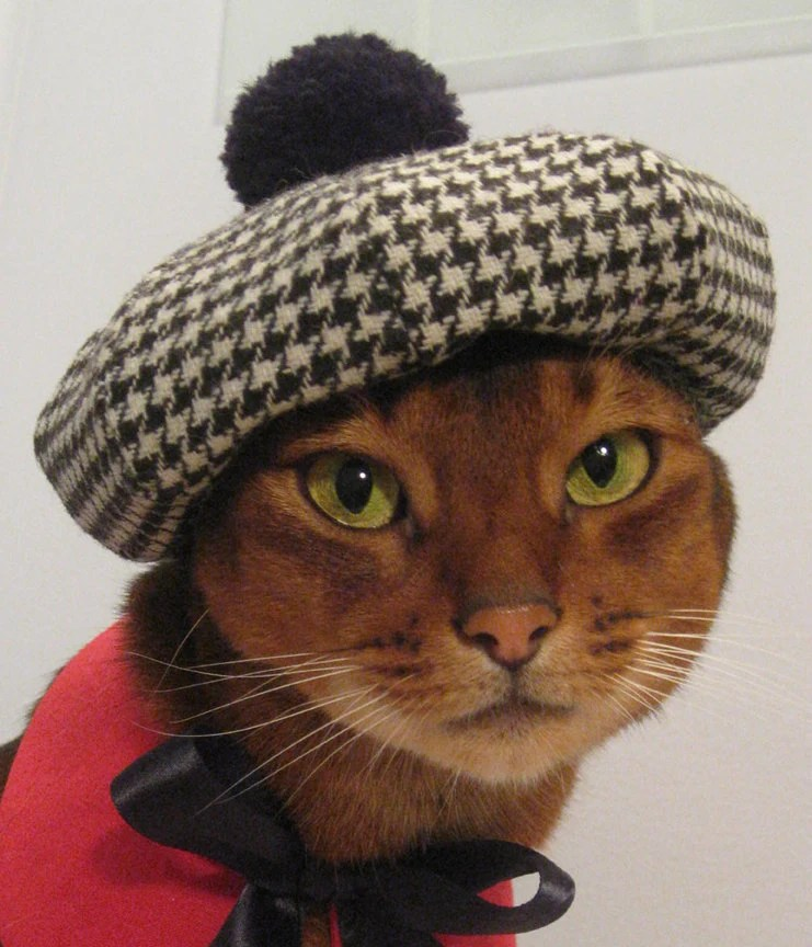 Houndstooth sectioned Beret with Pompom for Cat