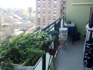 Appartamenti E Case In Vendita Via Italia Milano A Sesto