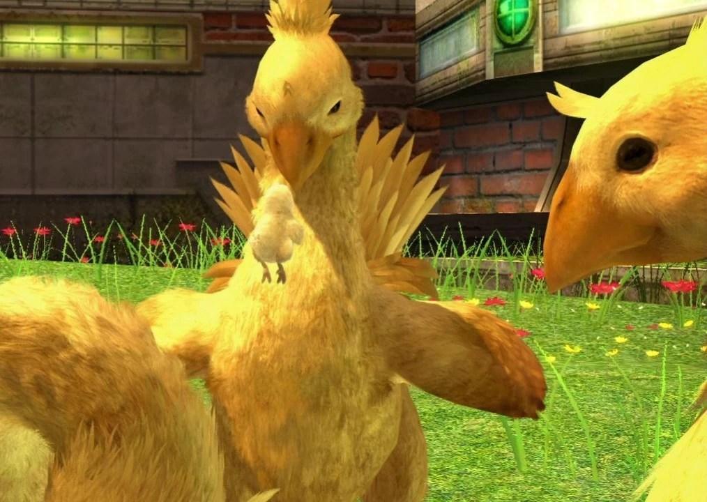 Chocobo Final Fantasy XIII Final Fantasy Wiki Wikia