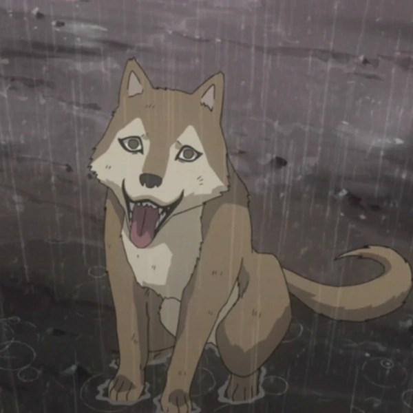 Sasuke Jinchuuriki