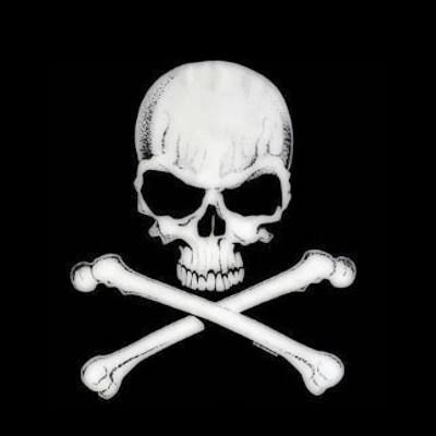 Image Skull And Crossbones 2jpg Red Dead Wiki Wikia
