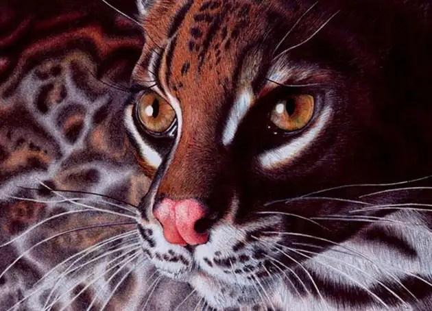37856447 - Fotos ultra realistas dibujadas con bolígrafos