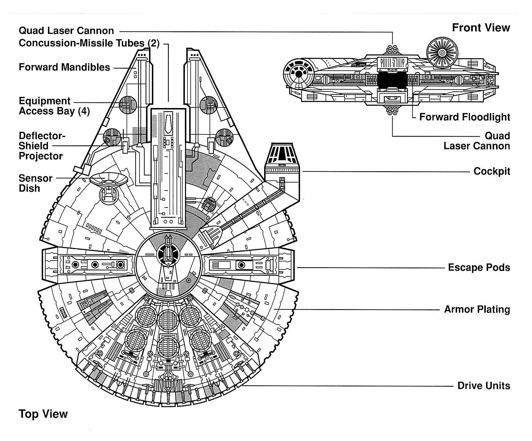 Falcon Egvv