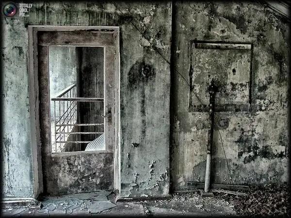 chernobyl43 - Chernobyl 25 años después