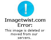 فيلم مترجم جميله المغربيه تبحث