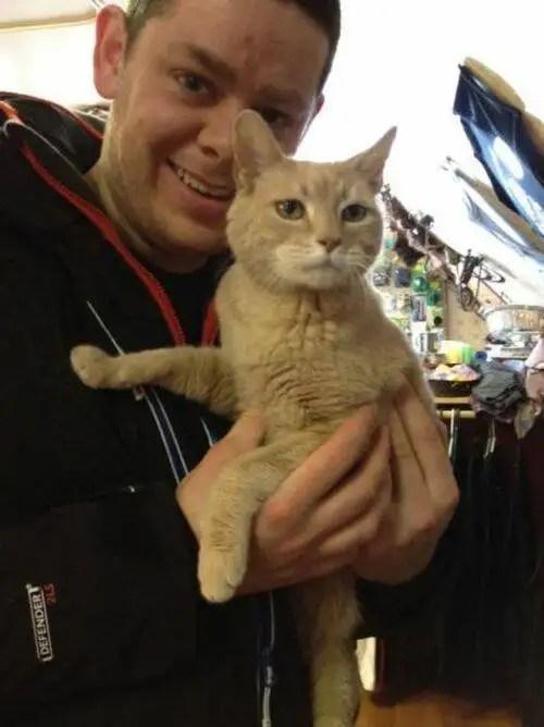 alcaldegato4 - El alcalde de un pueblo de Alaska es un gato (un gato de verdad)
