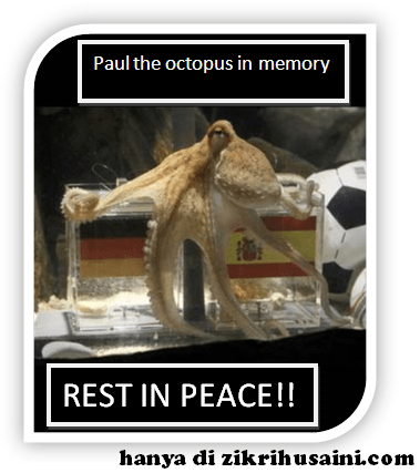 paul, paul the octopus, paul in memory, paul die, paul the octupus dead, sotong ramalan mati, the physic octopus die