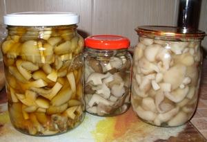 Простой способ домашней заготовки грибов на зиму Быстрые маринованные грибы