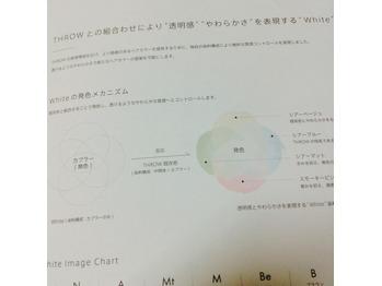 THROW新色【white/smoke】届きました☆_20170922_2