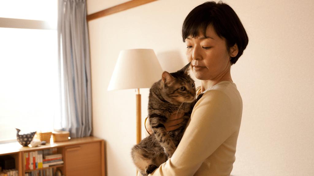 > U-NEXTの31日間無料体験で「パンとスープとネコ日和」を観る
