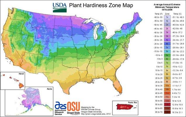 美国植物抗寒带地图