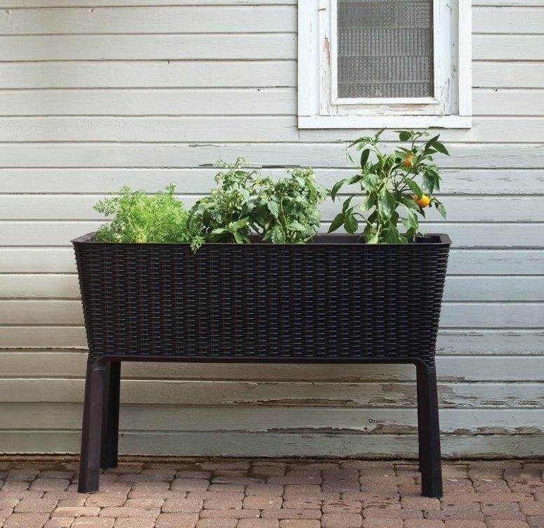 Elevated Planter 升高花坛种菜