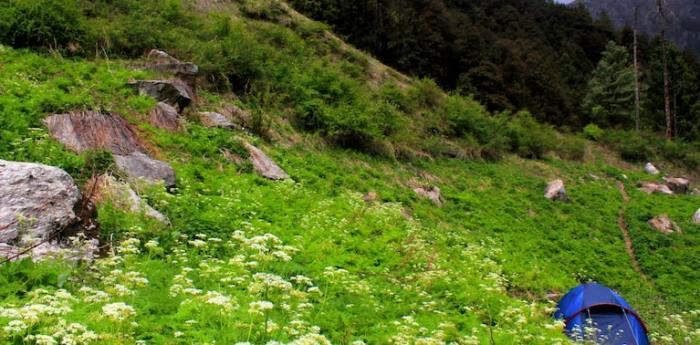 Great Himalayan National Park(GHNP)
