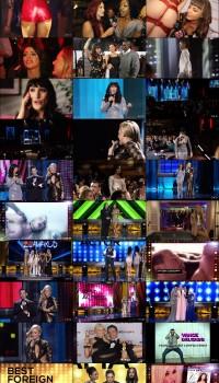 2015 AVN Awards Show
