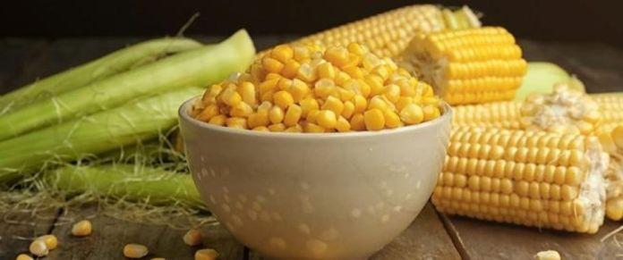 Maize: