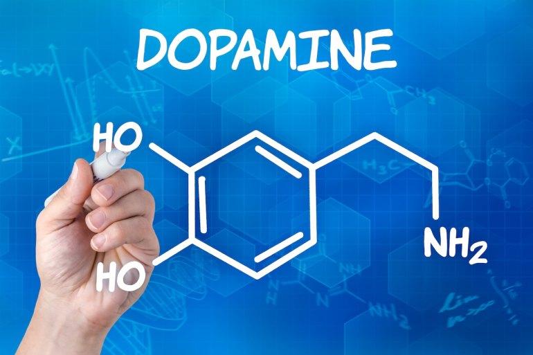「ドーパミン」の画像検索結果