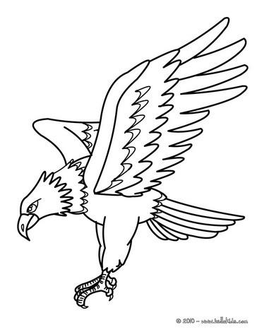 vogel zum ausmalen adler bild zum ausmalen