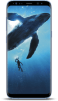 Samsung-Galaxy-S8-Coral-Blue