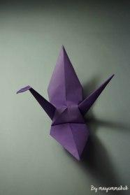 4_purple_withFullwing
