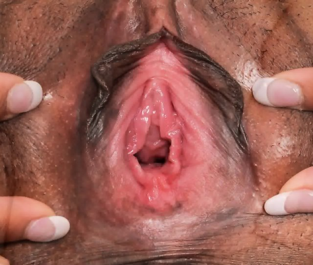 Female Textures Morphing Pvagina Close Up Hairy Sex Pussy
