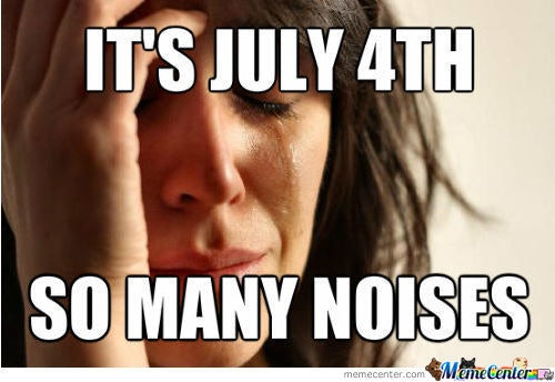 7 Funny Fourth Of July Memes Because America Can Be Pretty