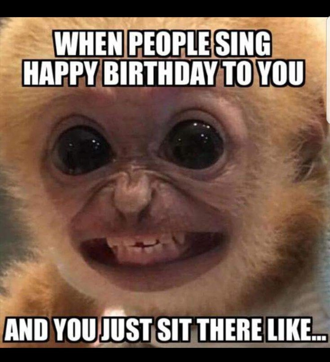 15 Funny Birthday Memes That Are So Accurate They Take The Cake