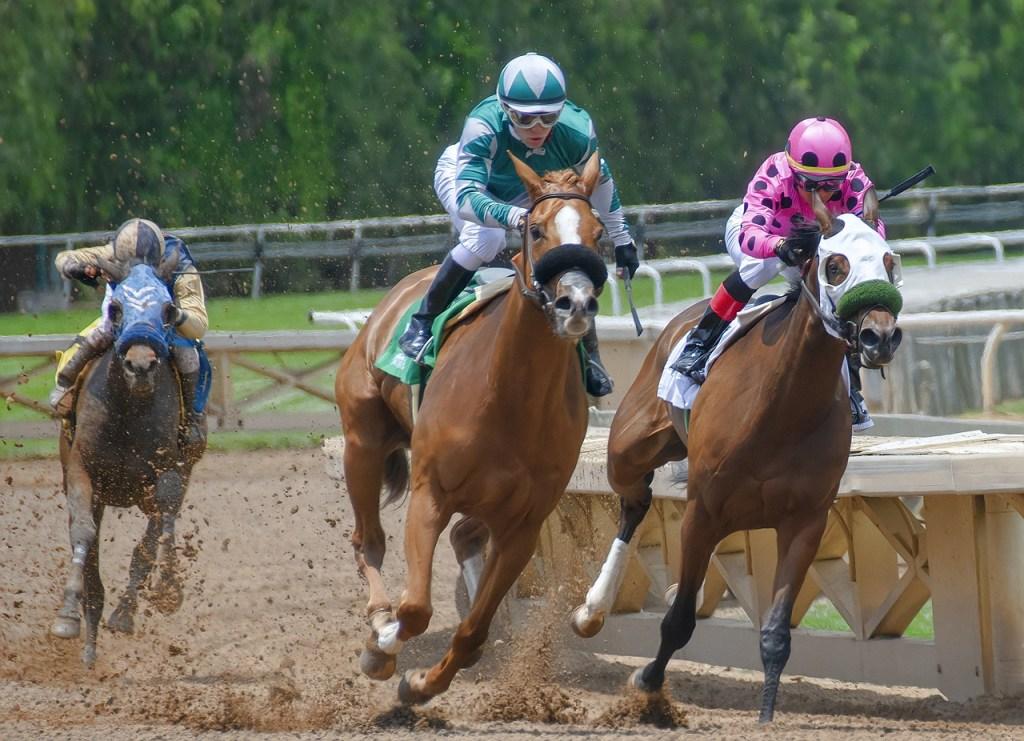 Hipódromo Camarero busca clarificar autorización para el inicio de las carreras