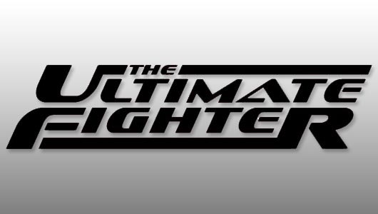 watch ultimate fighter season 28 episode 9