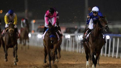 Meydan under starter's orders for world's richest racing meeting of Dubai  World Cup - Eurosport