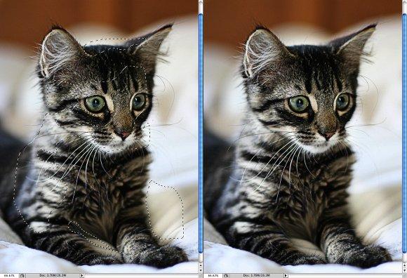 Photoshop Quick Tips #3 - Enhancing Photos with High Pass Filter