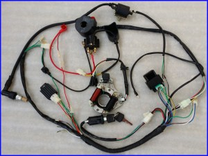 Full Electrics Wiring Harness CDI Coil 110cc 125cc ATV Quad Bike Buggy TD | eBay