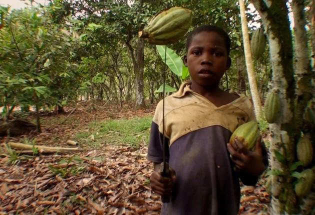 Coelhinho da pscoa que trazes pra mim Trabalho infantil da Costa do Marfim