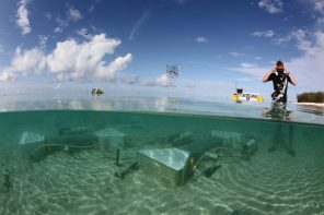 The FOCE devices at low tide on Heron Island in the Great Barrier Reef. Photo Credit David Kline at the Smithsonian Tropical Research Institute.