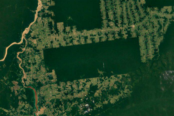 Satellite image of Terra Indígena Igarapé Lage. Image credit: NASA Landsat
