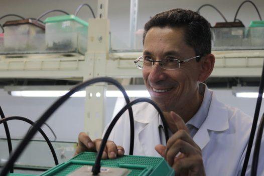 El biólogo Santiago Ron ya cuenta con una rana que lleva su apellido: Pristimantis Roni. Foto: Isabela Ponce.