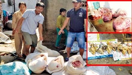 thực phẩm, an toàn thực phẩm, gia cầm, gia súc, thịt lợn, thực phẩm sạch, gà sạch, an toàn, sức khỏe, người tiêu dùng,