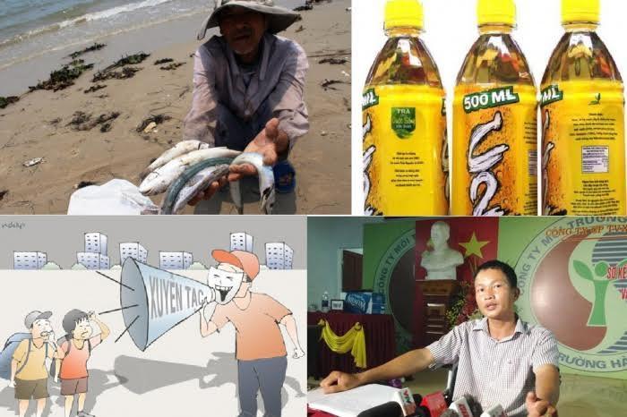Nước Việt, Trương Đình Anh, Ấn tượng trong tuần, Việt gian, Kỳ Duyên, nhà báo Kim Dung