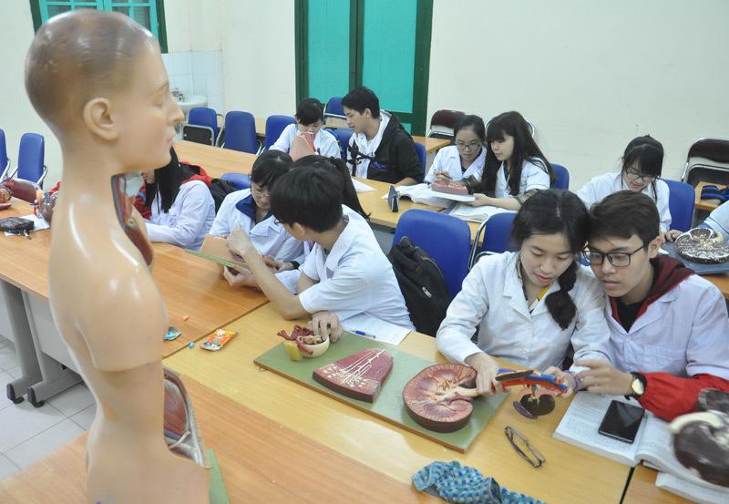 đào tạo ngành y, đào tạo y khoa, trường đại học y
