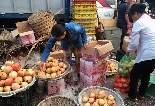 'Đặc sản Việt' gốc Tàu: Cú lừa thập kỷ, ta tự hại mình