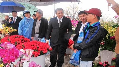 Chủ tịch Đà Nẵng thăm người bán hoa tết dưới mưa