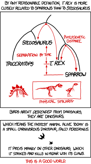 Birds / Dinosaurs Evolution from xkcd