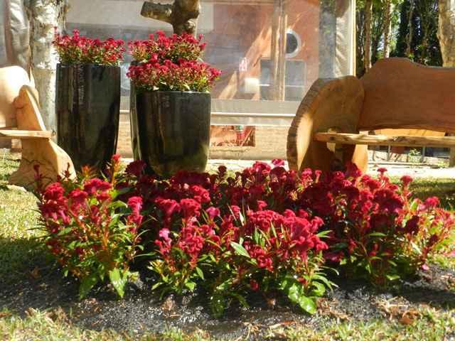 Mostra de paisagismo e jardinagem vai apresentar tendências e novidades para o segmento em evento na cidade nacional das flores no Brasil (Humberto de Castro/Divulgação)