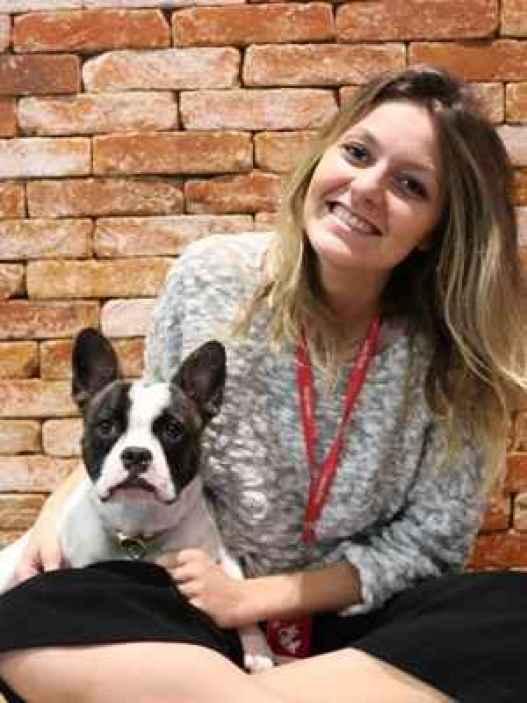 Resultado de imagem para Empresa do DF permite entrada de animais para aliviar tensão de funcionários