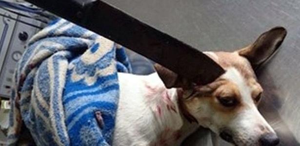 Guri foi operado para a retirada de facão e será submetido a nova cirurgia, agora no olho