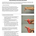 Tennis Elbow Home Exercise Pdf Anatomical Terms Of Motion Elbow