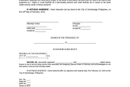 Sample Of Special Power Of Attorney For Authorization To Process