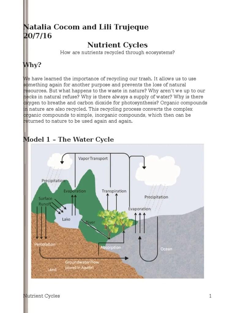 Nutrient Cycles Pogil N T Li C Rb Dioxide C Rb Dioxide