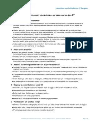 Europass Cv Instructions Fr Travail Affaires