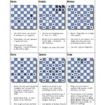 Chess Moves Beginners Cheat Sheet Pdf