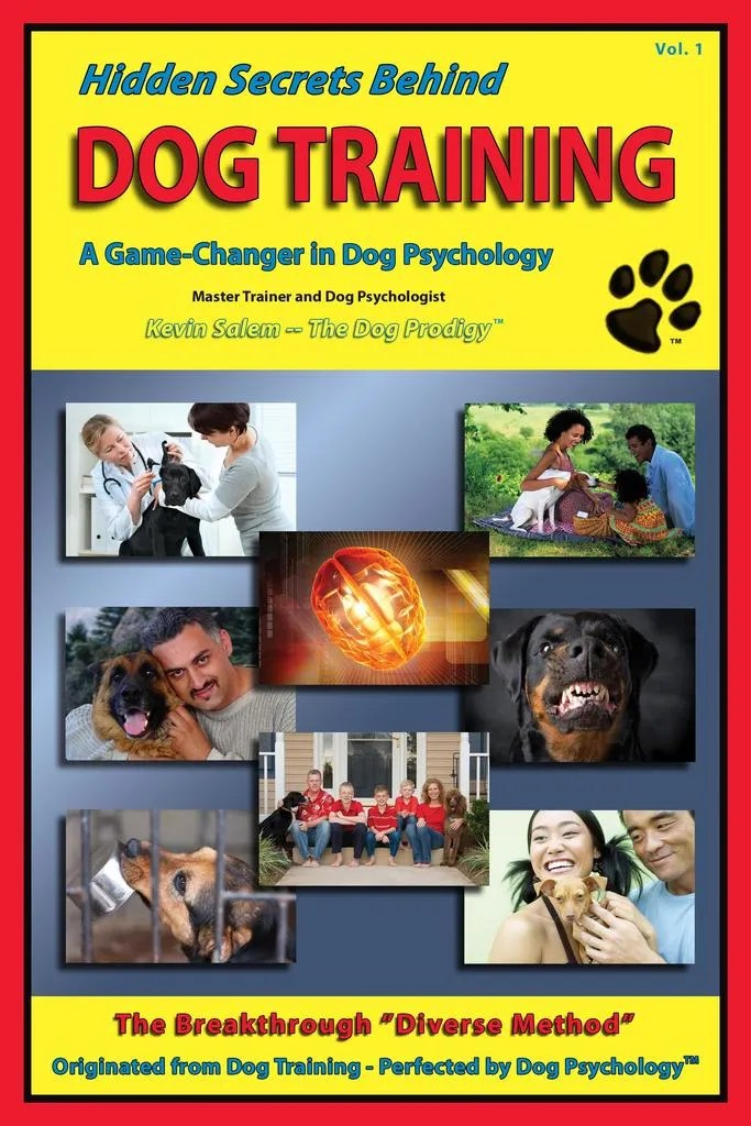 Obedience Training A Dog – The Secret Behind Dog Obedience